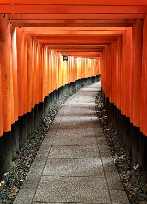 Kyoto Fushimi inari torii gates
