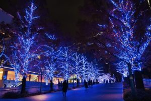 Christmas in Japan Lights