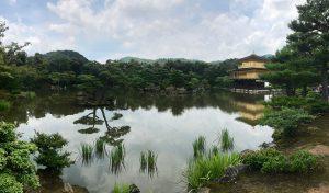 Kinkaku-ji Pano