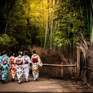 Kimono Exhibition at the V&A